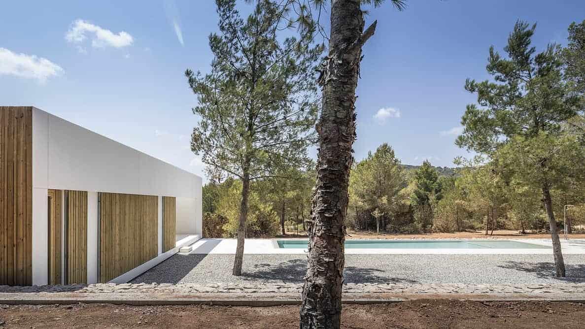 Ca l'amo House with pool by Marià Castelló Martínez- tree