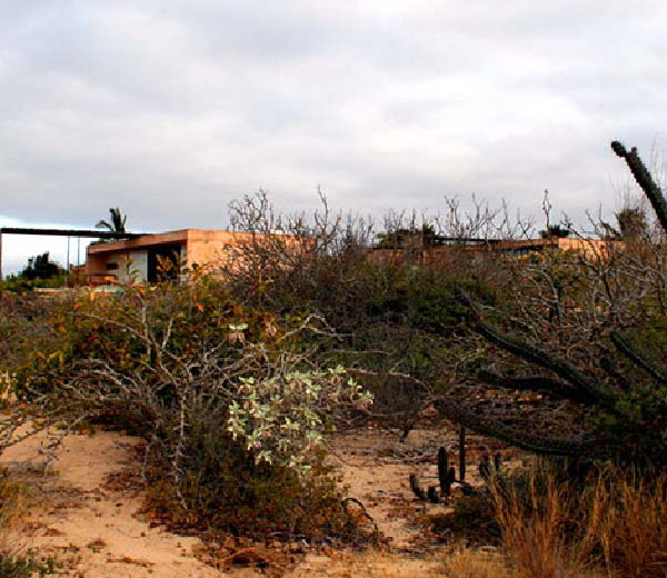 gregori-residence-beach-house-2.JPG